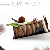 Emmanuel Hamon - Terra Africa